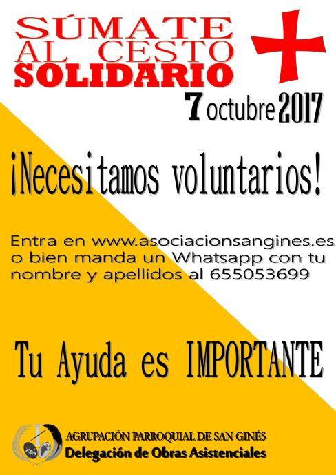 VOLUNTARIOS 2017